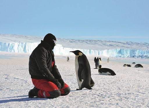 Приватна подорож до Антарктиди